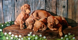 "Vizsla ""Dragon Flies"" Original Canvas"
