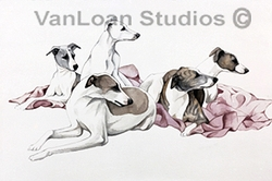 "Whippet ""Group On A Pink Blanket"""