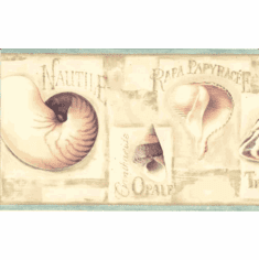 878142 Seashells Wallpaper Border LA036122b