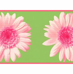 878329 Colorful Daisy Wallpaper Border RU8302b