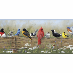 878344 Songbird Menagerie Wallpaper Border