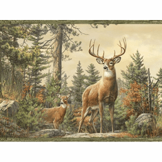 878464 Whitetail Crest Deer Wallpaper Border