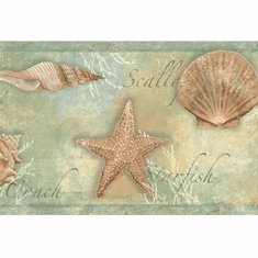 878533 Sea Shells Wallpaper Border CT46052b