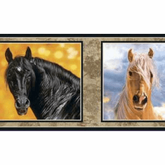 878569 Framed Horses Wallpaper Border