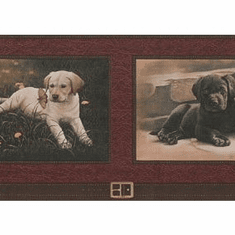 878744 Lab Puppies Framed Wallpaper Border