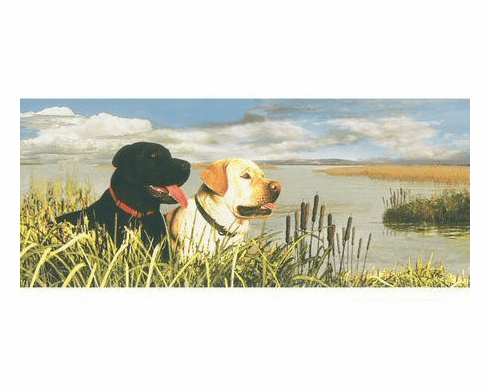 878824 Best Friends Dogs By The Lake Wallpaper Border