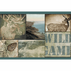878848 Wild Game Scenes Teal Wallpaper Border TTL01492b