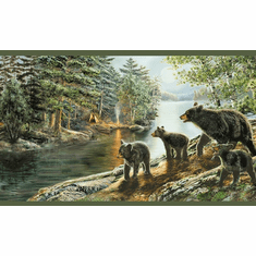 878856 Black Bear Wallpaper Border TTL01531b