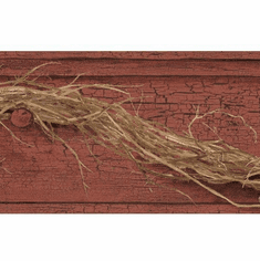 878889 Grapevine Twig Wallpaper Border AC4350bd