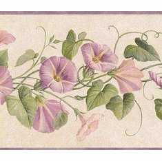 878981 Morning Glory Wallpaper Border