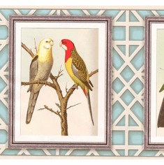 879038 Framed Birds Wallpaper Border