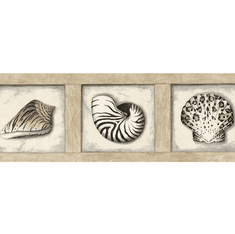 879359 Framed Seashells Wallpaper Border