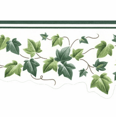 879405 Narrow Scalloped Ivy Wallpaper Border
