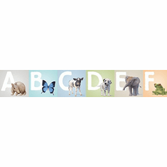 879512 Animal Alphabet Wallpaper Border