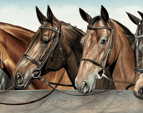 879576 12 Inches Wide Horses at Fence Mural-Style Border BE11161MB-12