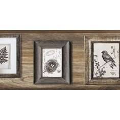 879650 Aviary Birds Botanicals Wallpaper Border Dark LG1371bd