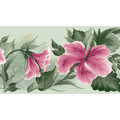 879773 Donna Dewberry Floral Wallpaper Border 240b63948