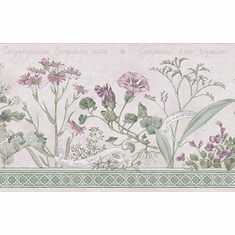 879839 Floral Botanical Wallpaper Border 92528FP