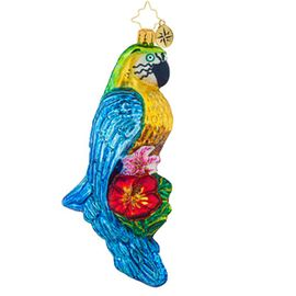 (SOLD OUT)  Impeccable Parrot