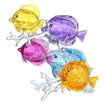 (SOLD OUT) Rainbow Fish Family