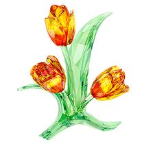 (SOLD OUT) Tulips