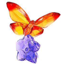 (SOLD OUT) Butterfly on Flower