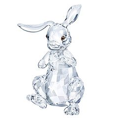 (SOLD OUT)  Rabbit