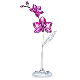 (SOLD OUT) Flower Dreams - Orchid, large