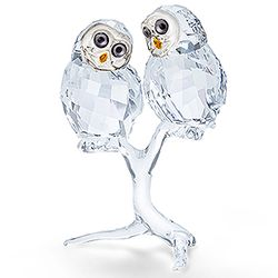 Owl Couple