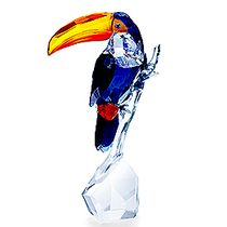 (SOLD OUT) Toucan