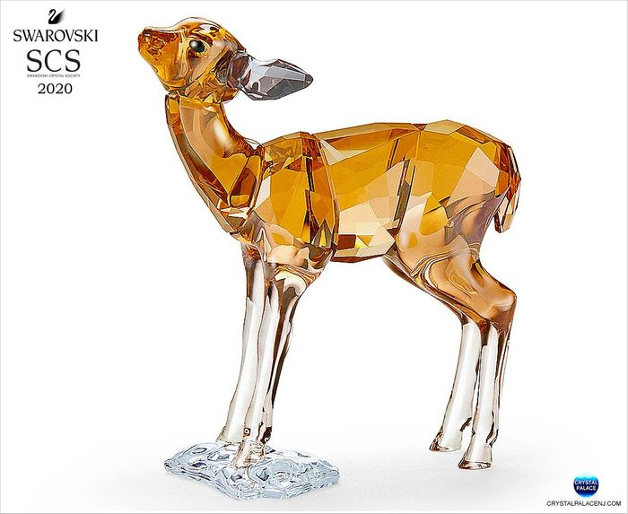SCS 2020 Annual Edition, Fawn