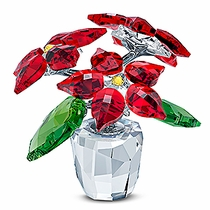 (SOLD OUT) Poinsettia