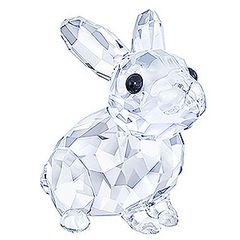 (SOLD OUT) Baby Rabbit