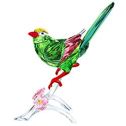 (SOLD OUT) Green Magpie
