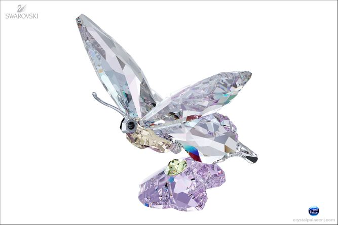 (SOLD OUT) SCS Butterfly (Event Piece 2013)