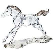 (SOLD OUT) Swarovski SCS Foal  Annual Edition 2014