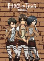 Attack On Titan - Group 3 Wallscroll Pre-Order