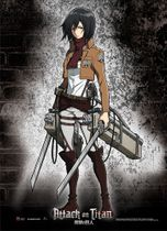 Attack On Titan - Mikasa Fabric Poster Back Order