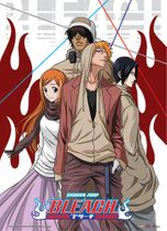 Bleach Casual Look Wall Scroll RETIRED