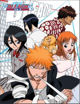 Bleach - Group 2 Sublimation Throw Blanket Pre-Order