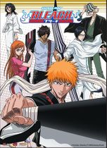 Bleach Ichigo Team Wall Scroll Pre-Order