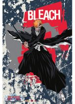 Bleach Ichigo Wall Scroll Pre-Order