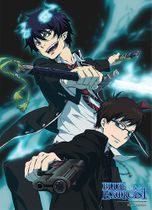 Blue Exorcist Rin & Yukio Fabric Poster Back Order