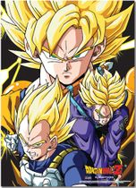 Dragon Ball Z Crew Fabric Posters Pre-Order