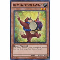 Baby Raccoon Tantan SHSP-EN015 - YuGiOh Shadow Specters Common Card