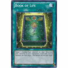 Book of Life GLD5-EN039 - YuGiOh Haunted Mine Common Card