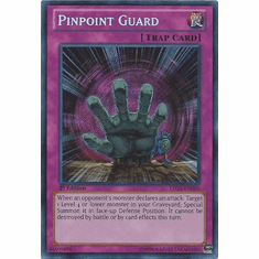 Pinpoint Guard LTGY-EN069 - Lord Of The Tachyon Galaxy Secret Rare
