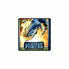 Pokemon EX Unseen Forces Single Cards