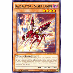 Raidraptor - Sharp Lanius CROS-EN016 Common - YuGiOh Crossed Souls Card