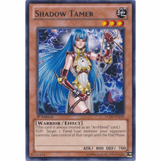 Shadow Tamer LCJW-EN239 - YuGiOh Joey's World Rare Card